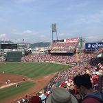 赤一色で広島カープを応援⚾️📣
